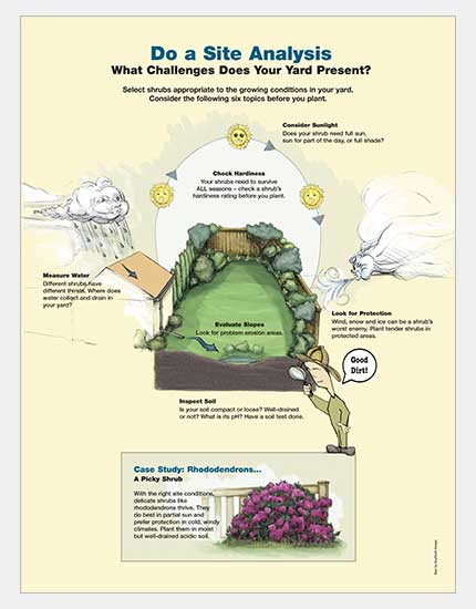 Interpretive Sign, Site Analysis for Planting